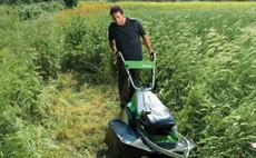 Masini de tuns iarba pentru vegetatie inalta