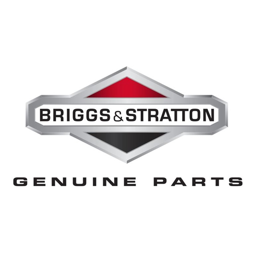 Piese Motoare Briggs & Stratton
