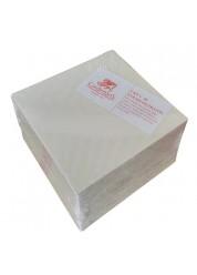 Set 25 placi filtrante 20x20 cm - CKP V20