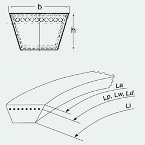 Curea trapezoidala Rubena Z 795 Lw / 10x775 Li / Z 30 1/2 EL